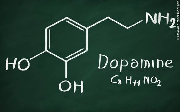 도파민의 정의와 기능