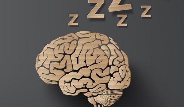 잠꼬대는 수면 장애일까?