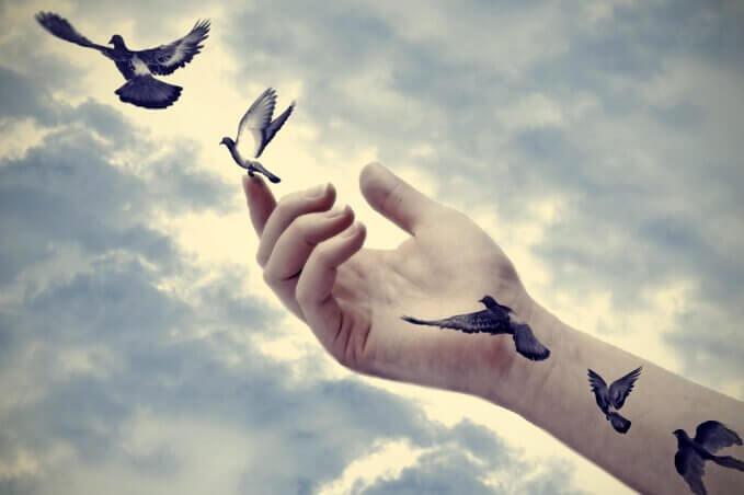 날아가는 새