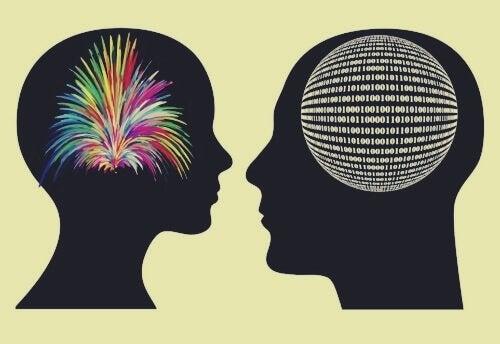 뇌의 차이