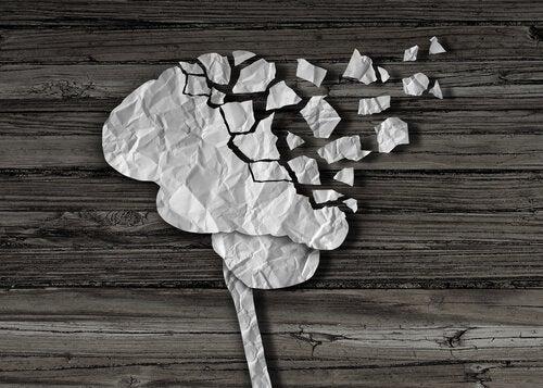뇌 손상: 뇌 손상이 사랑하는 사람을 영원히 변화시킬 때