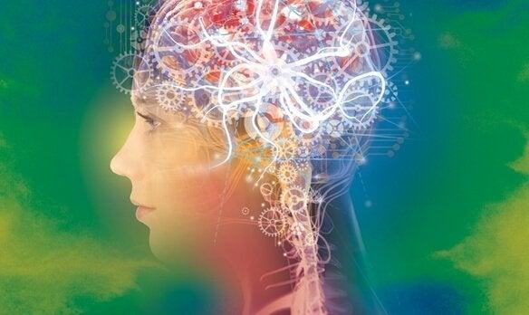 활발한 뇌 레이븐 매트릭스 검사