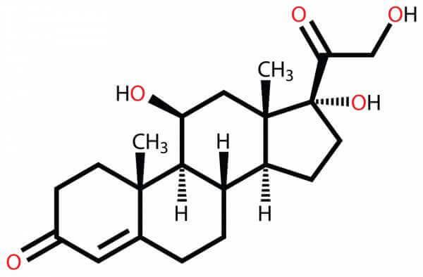 스트레스 호르몬, 코르티솔