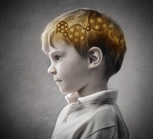 아이의 뇌