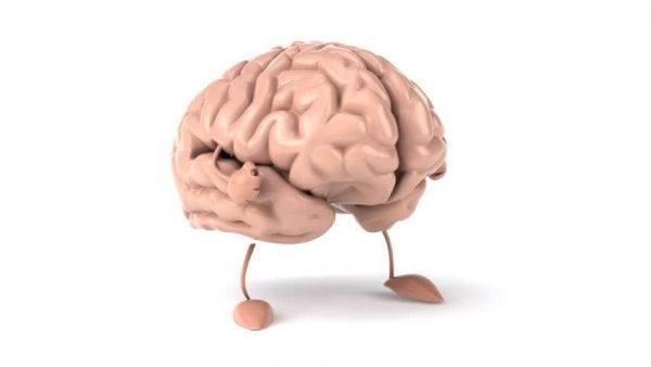 다리가 달린 두뇌: 하이킹 그리고 두뇌