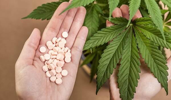 한손에는 알약 한손에는 마리화나잎 사진