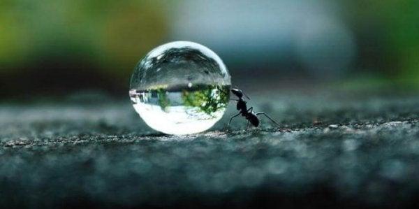 끈기는 꿈을 위한 양식: 절대 멈추지 말라