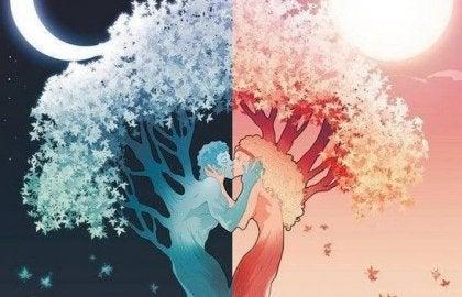 커플 나무: 사랑에 대한 7가지 진실