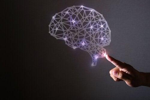 자폐증 그리고 아인슈타인: 특별한 뇌 이야기