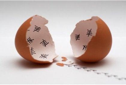 달걀 껍질