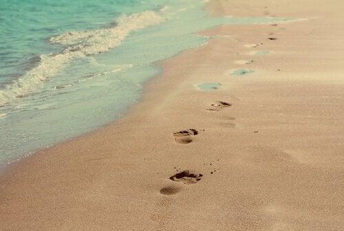 해변가 발자국; 우리는 세상에 무엇을 줄 수 있을까?