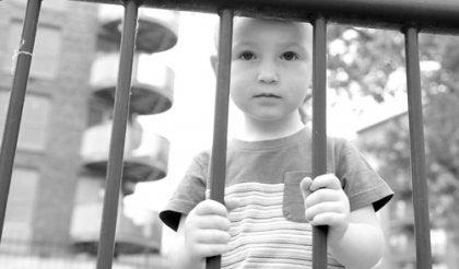 요람 아이: 현대의 부모들은 아이들을 온실 속 난초처럼 기른다