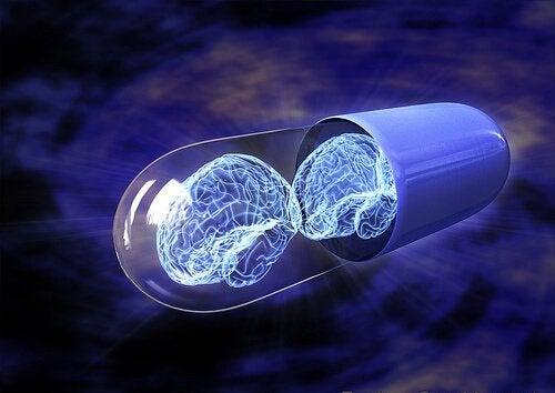 누트로픽: 정말 우리를 더 똑똑하게 만들까?