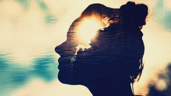 자석 같은 마음: 배우고 정서적 소통을 원하는 사람들