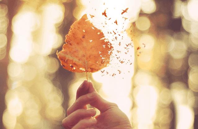 상처받은 마음을 치유하는 5가지 방법