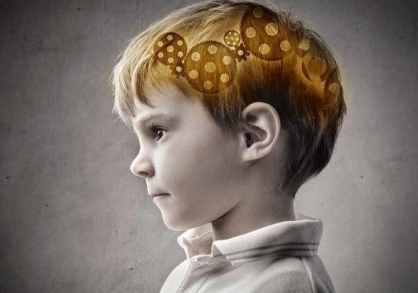 아이의 두뇌