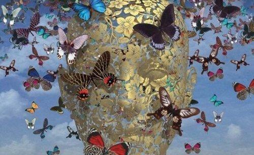사람과 나비: 공감하는 두뇌