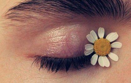 꽃을 품은 눈