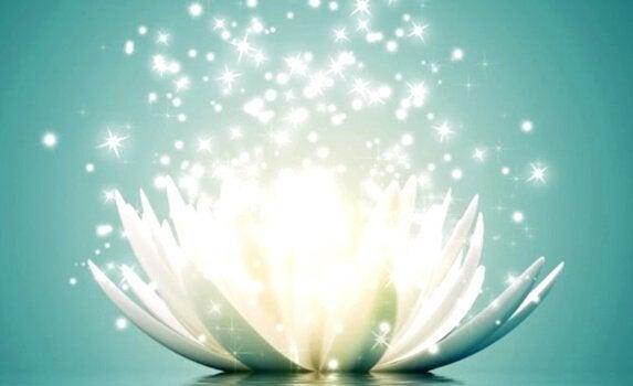 긍정적인 에너지를 회복하기 위한 9가지 명언들