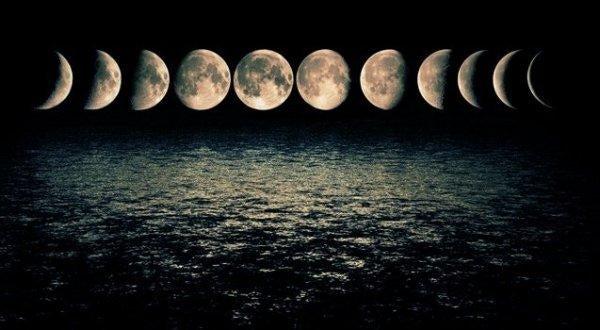 달의 각기 다른 단계; 신경 과학자 마크 필리피