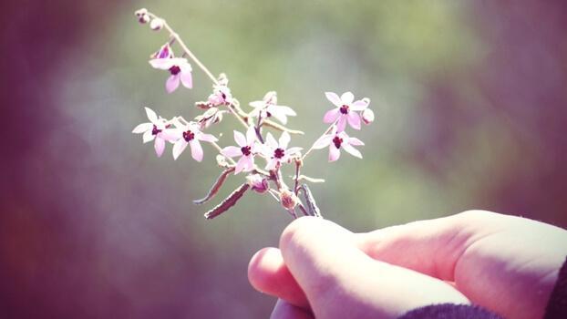 꽃을 든 손
