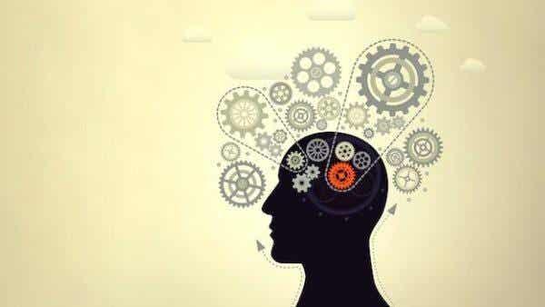 지능 발달: 지능을 높이기 위한 7가지 훌륭한 비법