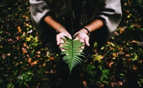 삶의 의미를 찾기 위해 평온함과 인내심이 필요하다