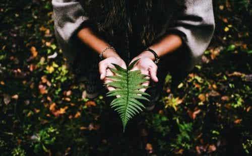 삶의 의미를 찾기 위해서는 평온함과 인내심이 필요하다