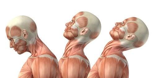 목 통증을 관리하기 위한 팁