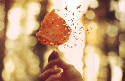 감정적 고통을 표현하기 위한 5가지 열쇠