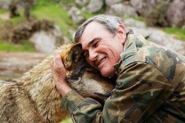 늑대와 남자 야생아, 그리고 사회적 행동