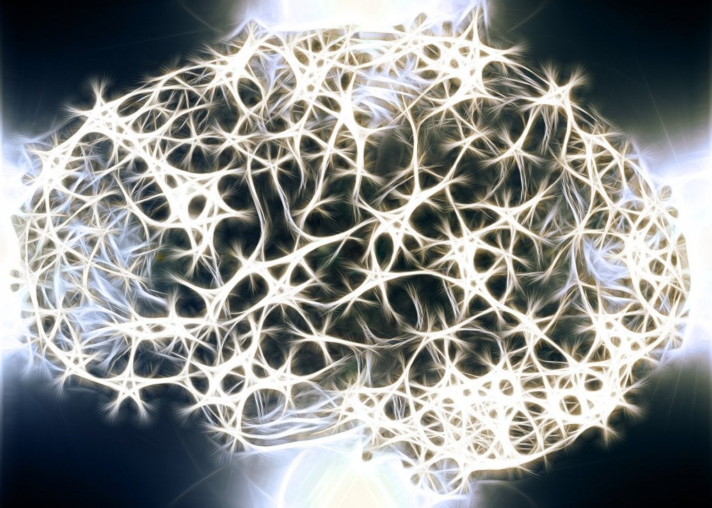 신경계의 백질이 중요한 이유는 무엇일까?