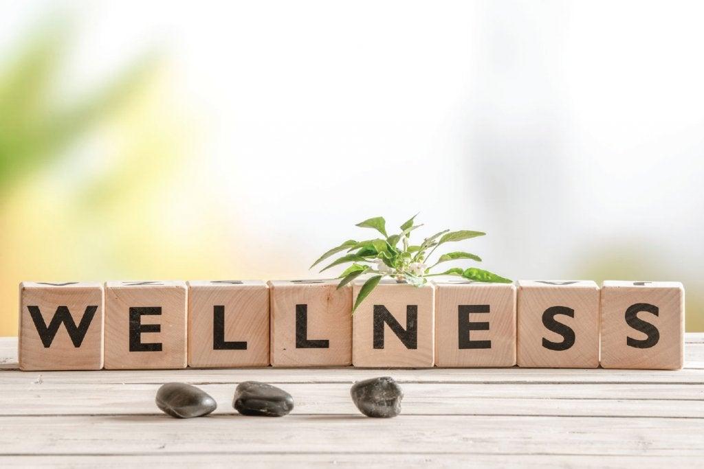 웰니스의 발견: 건강과 몸과 마음의 균형
