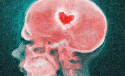 실연의 과학: 이별하는 동안 뇌는 어떻게 변할까?