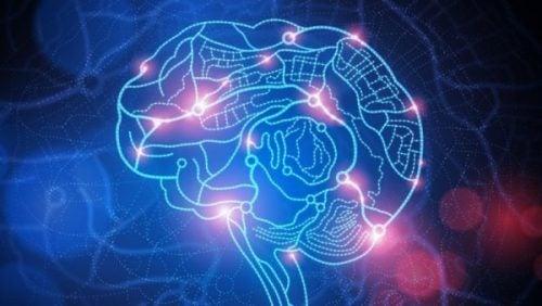 굴욕감을 보이는 뇌