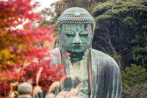 불교의 사랑은 개인에게서 나오는 것이다