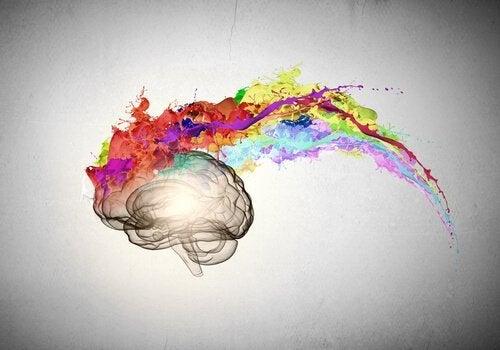 낙관주의자의 두뇌2