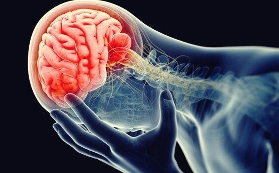 신경염 또는 우울증의 염증 이론