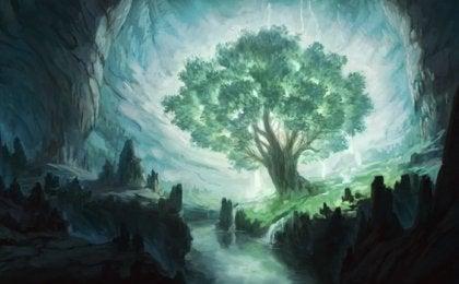 소망의 나무, 오쇼 이야기