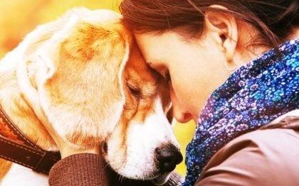 동물을 사랑하는 이유, 왜일까?