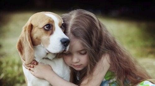 동물들은 사람에게 최고의 치료사가 된다