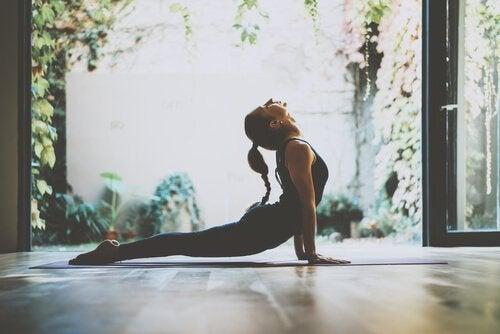 미주 신경은 건강한 신체의 시작이다