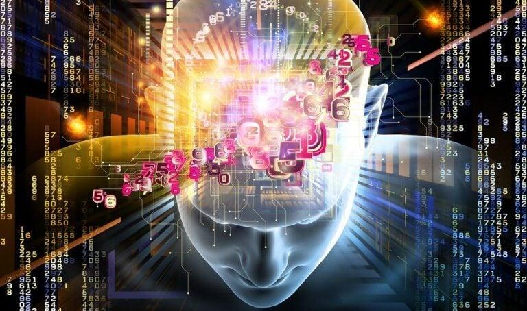 인간의 두뇌가 가진 7가지 수수께끼 02