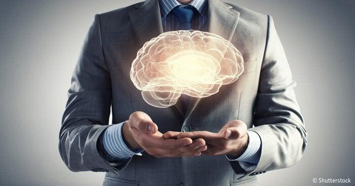 인간의 두뇌가 가진 7가지 수수께끼