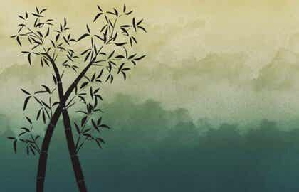 대나무처럼 되는 것: 인내심, 강인함, 유연함