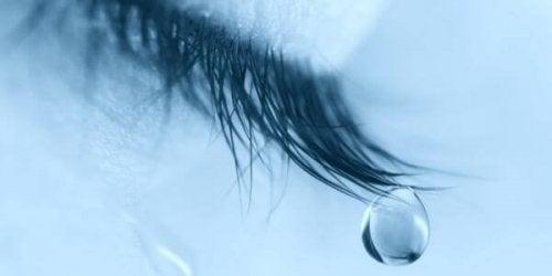 울음의 혜택 7가지
