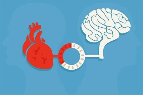뇌와 심장은 항상 소통을 한다