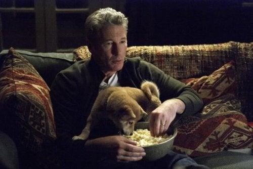 하치 이야기는 개와 인간의 우정을 그린 슬픈 영화이다
