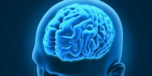 재미있는 신경 질환 3가지