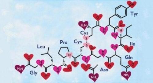 옥시토신은 행동에 긍정적인 역할을 한다